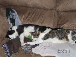 Roman & Savannah taking a nap