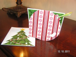 Ornament Card & Envelope - Wild Card