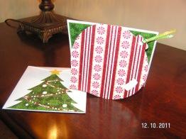 Ornament Card & Envelope - Wild Card